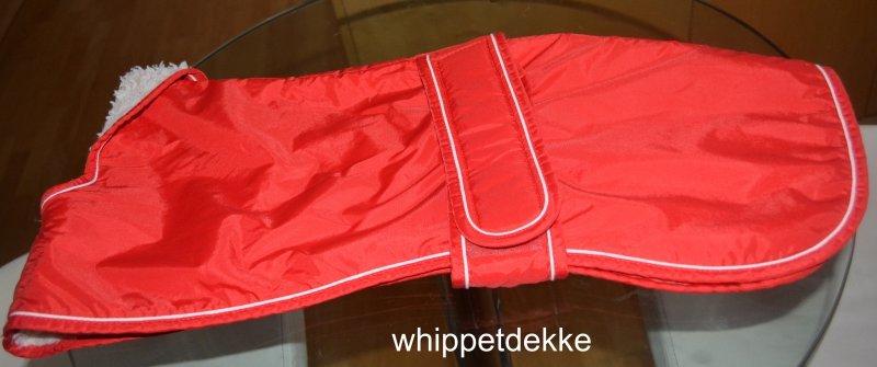 whippetdekke2__1478869337_96818.jpg