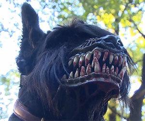 werewolf-muzzle.jpg
